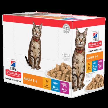 Hill's Feline Adult Multipack vištiena/žuvis/jautiena 12x85g