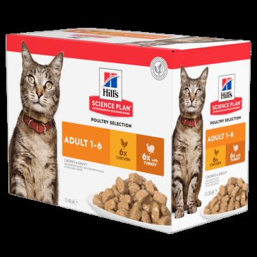 Hill's Feline Adult Multipack vištiena/kalakutiena 12x85g