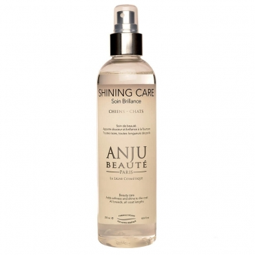 ANJU BEAUTE Paris SHINING CARE purškiamas losjonas
