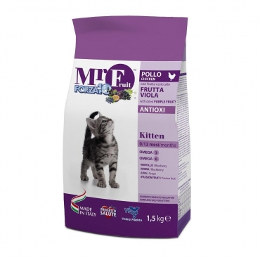 FORZA10 Mr. Fuit Kitten