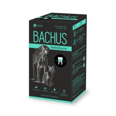 BACHUS Teeth&Gums 60 skanių tablečių