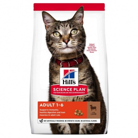 Hill's Science Plan Feline Adult Lamb, sausas maistas katėms +Kitty time kraikas