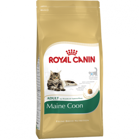 Royal Canin FBN Maine Coon Adult