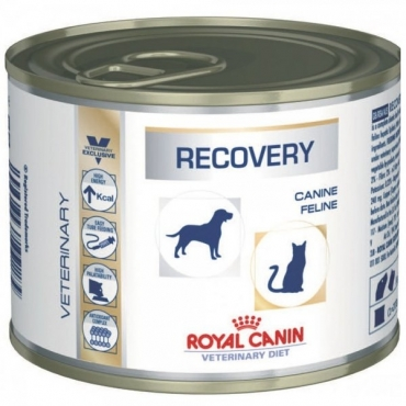 Royal Canin Recovery 200g