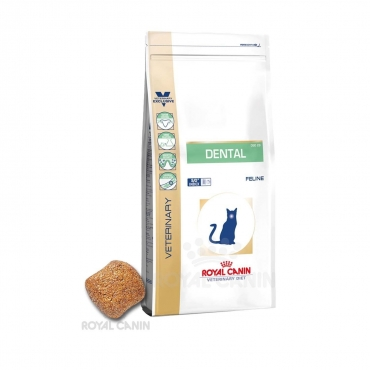 Royal Canin Feline Dental 1,5 kg