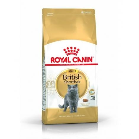 Royal Canin FBN British Shorthair Adult