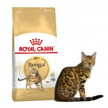 Royal Canin FBN Bengal