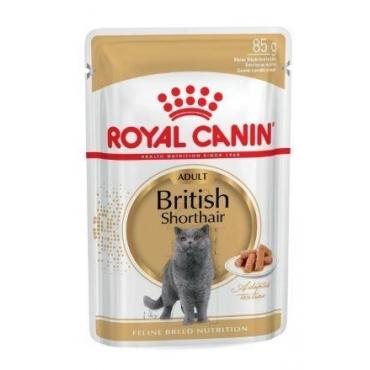 Royal Canin FBN British Shorthair šlapias ėdalas (12pak. x 85g)