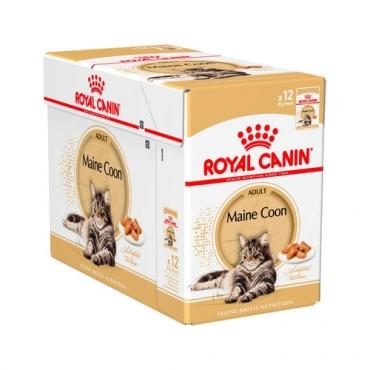 Royal Canin FBN Maine Coon šlapias ėdalas (12pak. x 85g)
