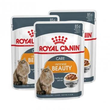 Royal Canin Intense Beauty šlapias ėdalas (gabaliukai padaže) (85g. x 12pak.)