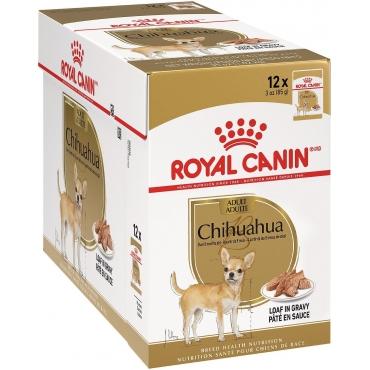 Royal Canin Chihuahua Adult paštetas (85g. x 12pak)