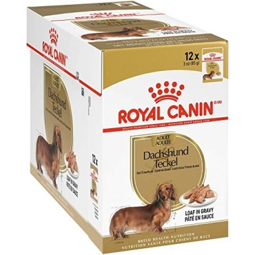 Royal Canin Dachshund Adult paštetas (85g. x 12pak.)