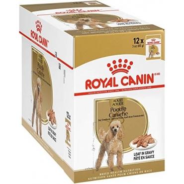 Royal Canin Poodle Adult paštetas (85g. x 12pak.)